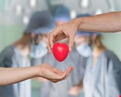 قلب | دانلود پاورپوینت پرستاری و پزشکی در مورد پیوند قلب