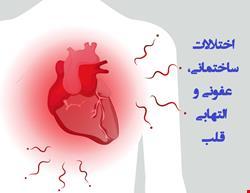 قلب | دانلود پاورپوینت پرستاری در مورد مراقبت از بیماران مبتلا به اختلالات ساختمانی، عفونی و التهابی قلب