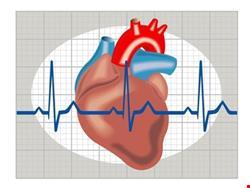 قلب | دانلود پاورپوینت پرستاری در مورد مراقبت از بیماران مبتلا به دیس ریتمی ها و اختلالات دستگاه هدایتی قلب